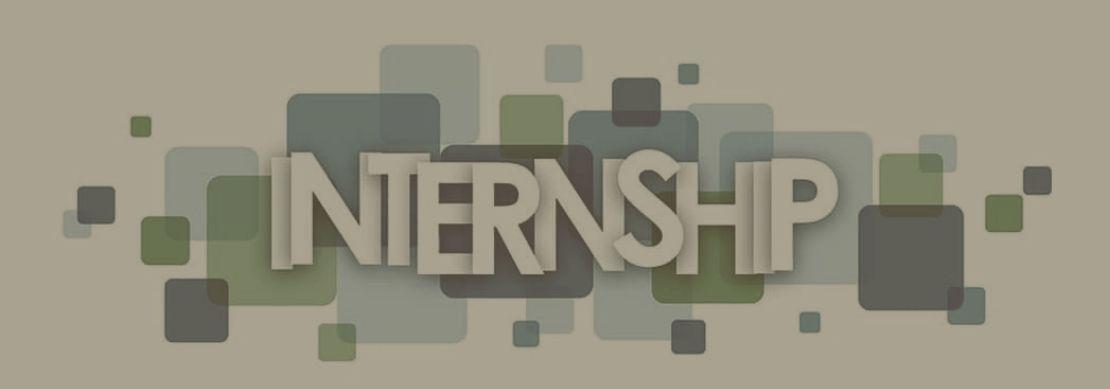 ce este un internship